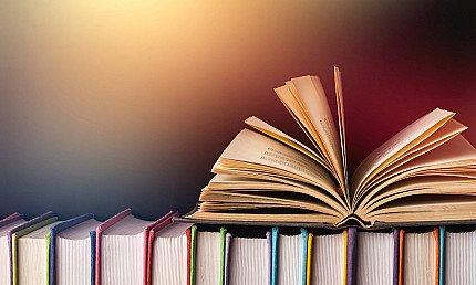 Grade Xi Humanities